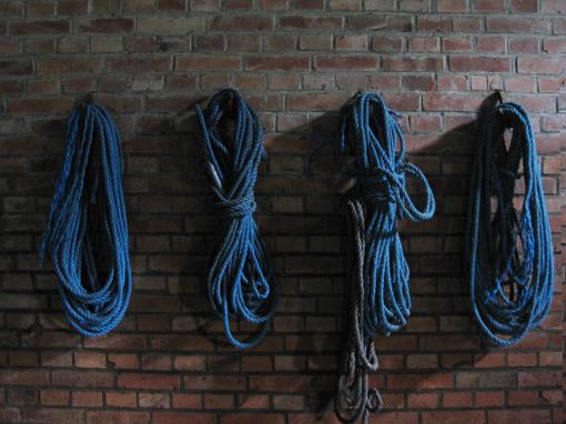 Blaue Seile im Stall